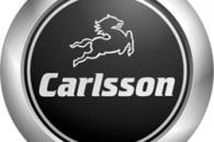 История Carlsson